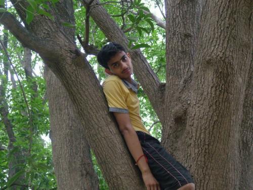 Shakambari Picnic (28)