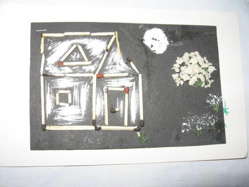Various Activities (98)